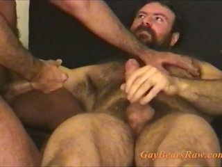 These hairy blissful bears are cumming