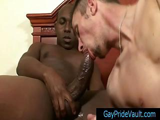Boxer getting his stupendous unearth sucked long and immutable gaypridevault