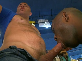 Interracial sexual connection starts with blow and binder with anal sexual connection